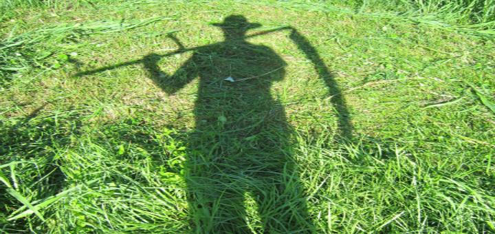 Tallest Blade of Grass
